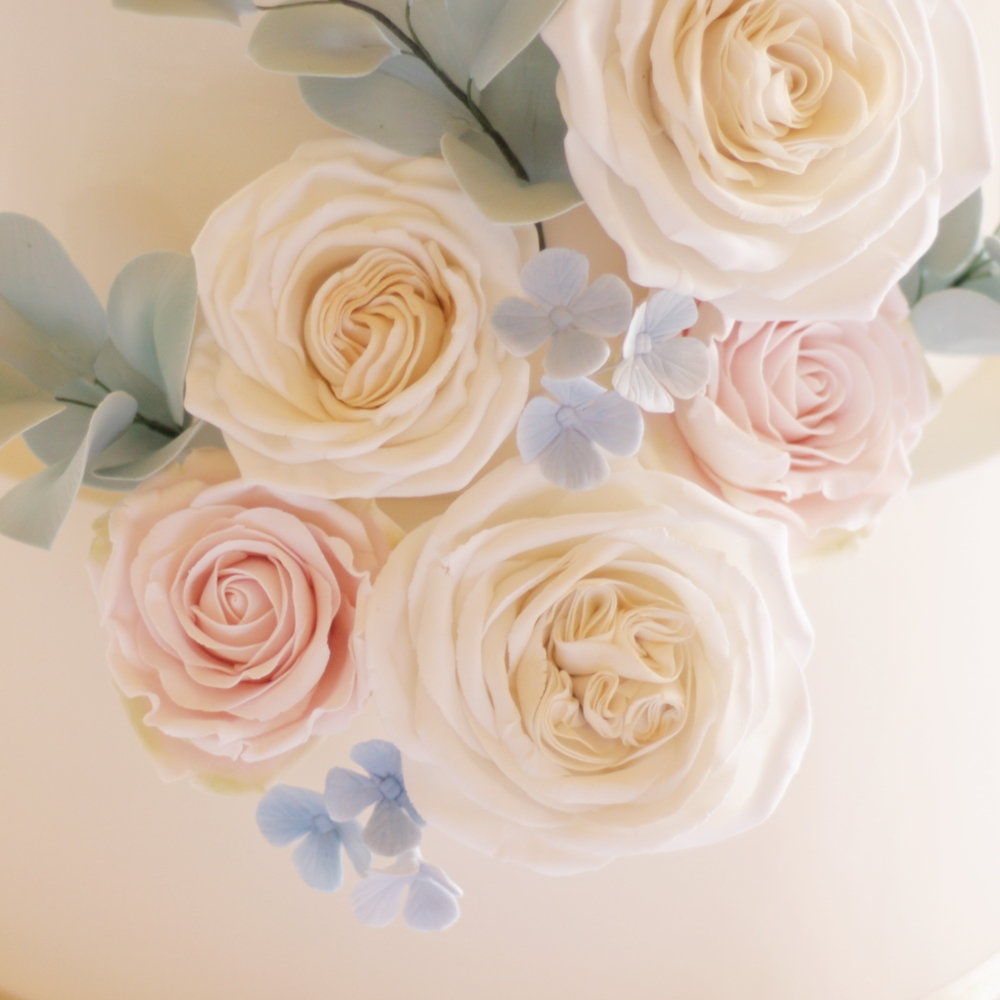 Sugar roses in pastel pink and ivory with blue hydrangea